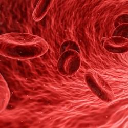 blood-1813410_960_720-1